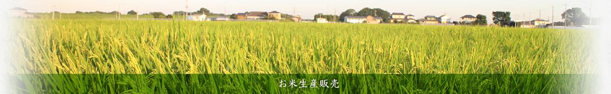 お米生産販売